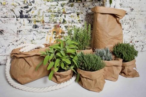 jardin aromatique sacs papier