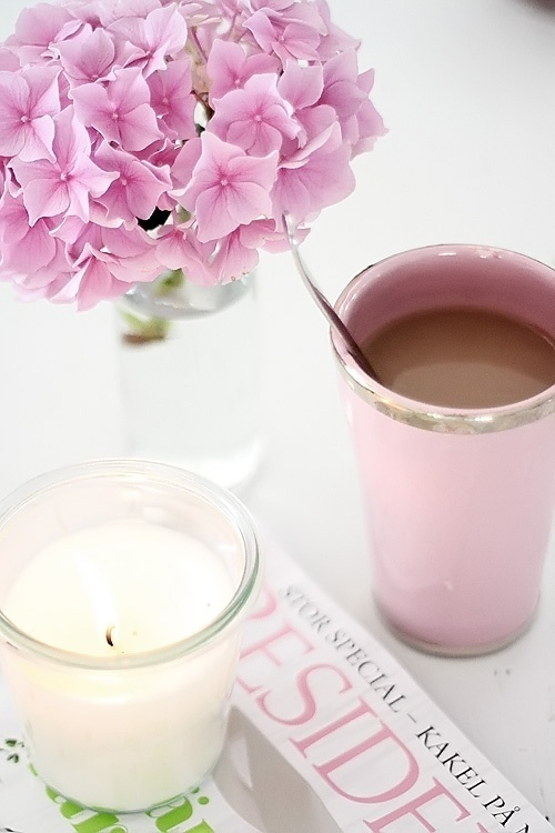rose bonbon hortensia