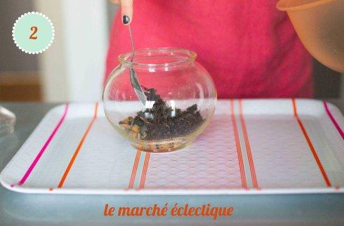 terrarium diy 2