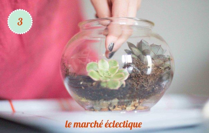 terrarium diy 3